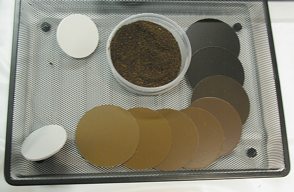 Visual SCAA Coffee Standards for roast classfication