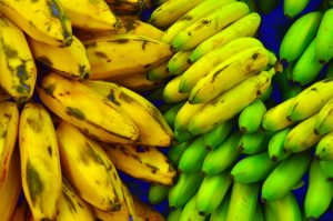 Green to yellow bananas