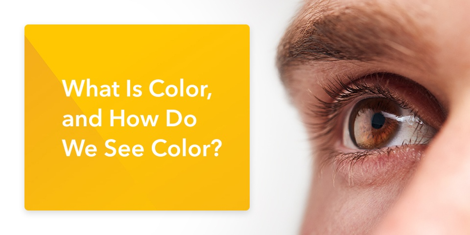 01-What-Is-Color-and-How-Do-We-See-Color_