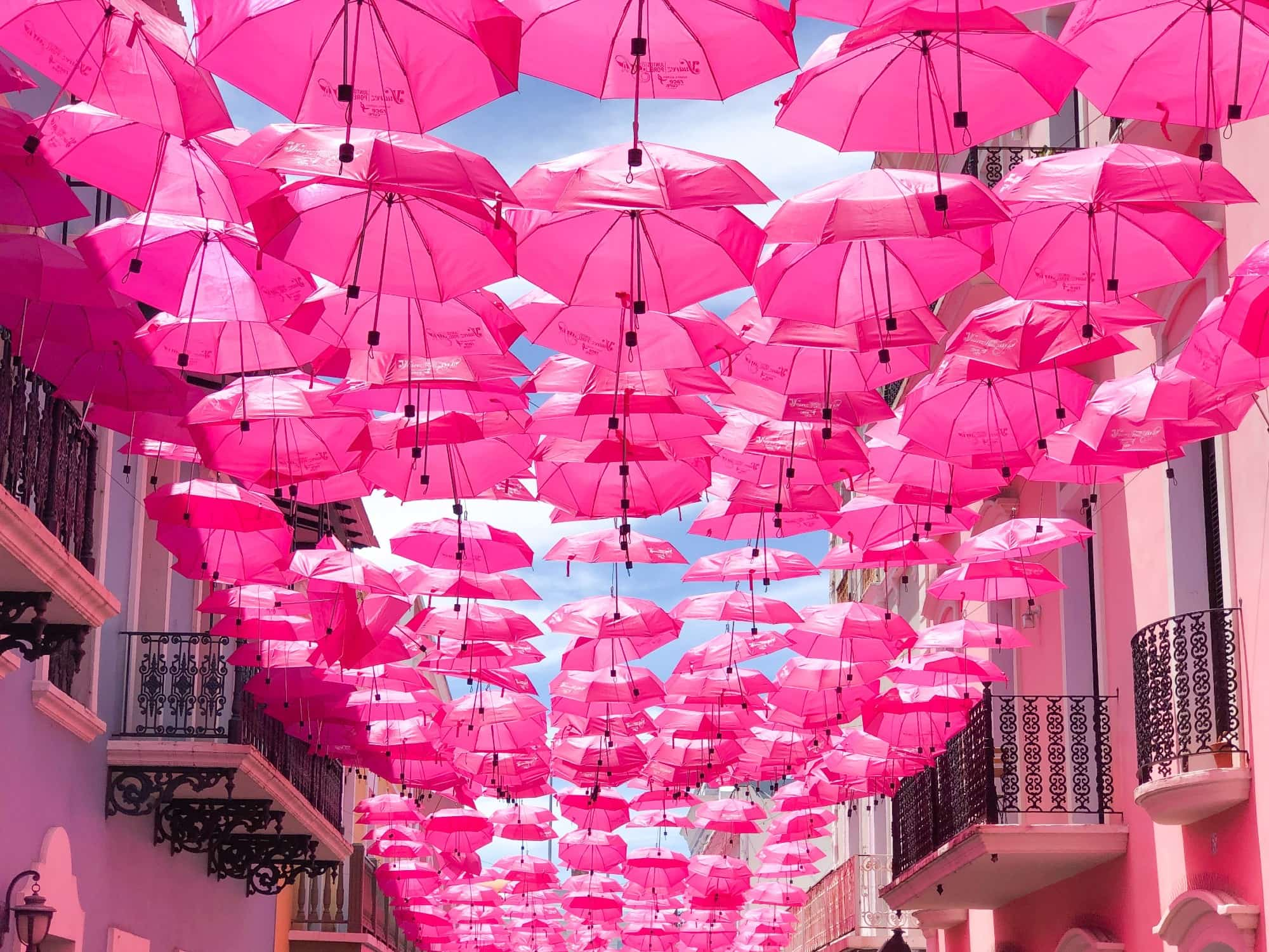 The Color Pink — History, Meaning and Facts