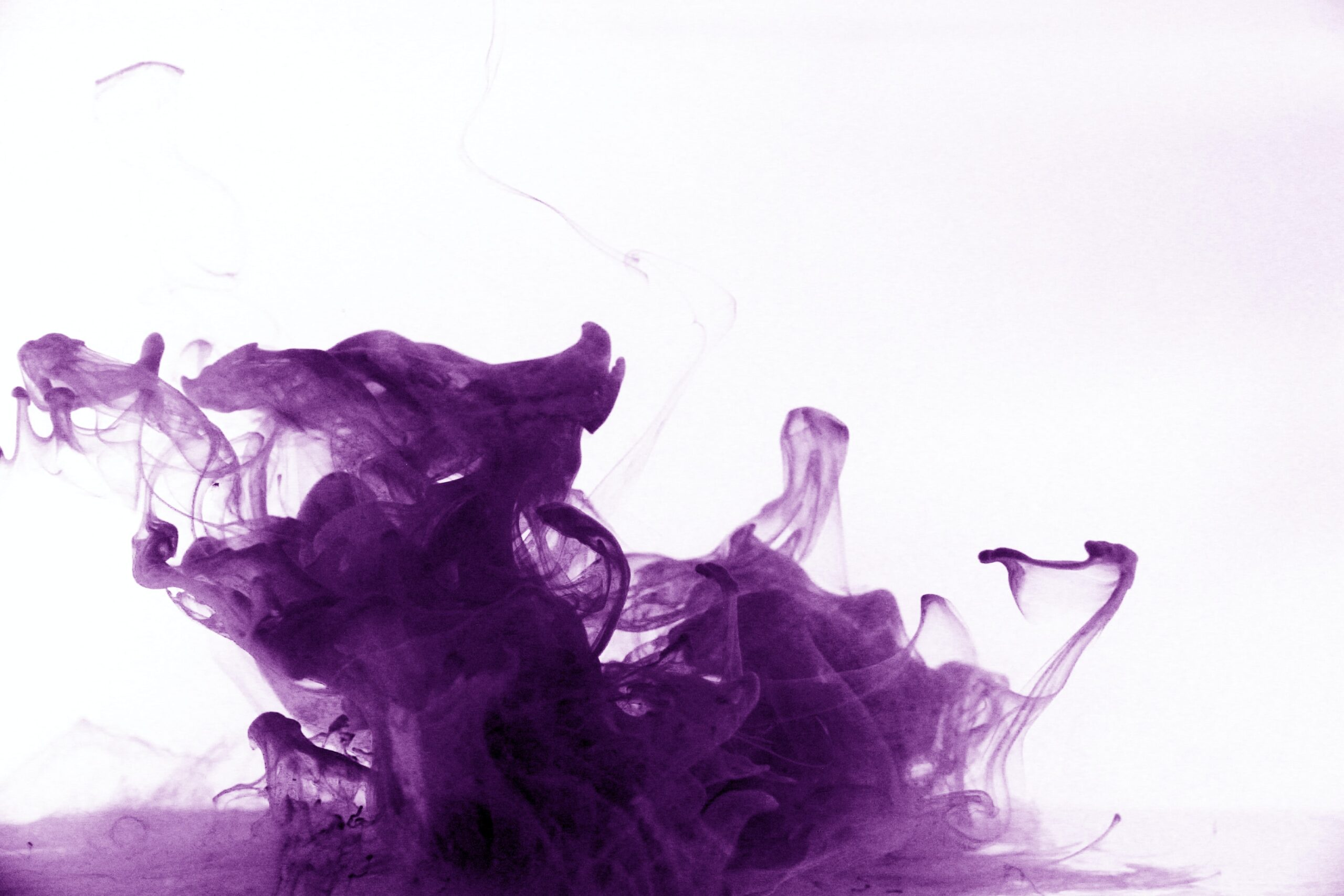 The Color Purple — History, Meaning and Facts